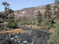 Fly fish the Rio Grande on a New Mexico fly fishing guide trip while fly fishing Taos or Red River