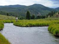 Fly fishing the Rio Costilla on a New Mexico fly fishing guide trip