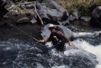 Fly fish the Red River on a New Mexico fly fishing guide trip